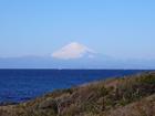 まさしく「冬の富士山」