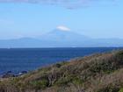 頭に雪を被った綺麗な富士山です。