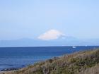 今日は綺麗ですね、富士山