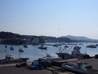マリーナから見た今日の佐島漁港