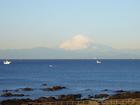 朝陽を浴びて映える富士山