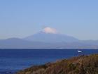 痛いような寒さですが富士山が綺麗です