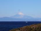 今年初めての富士山です